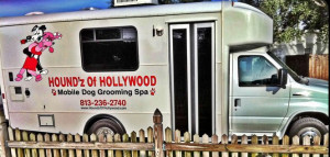 Mobile dog grooming truck
